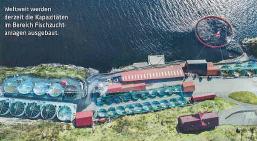 Насосы SPECK Pumpen и новое направление бизнеса: аквакультура.